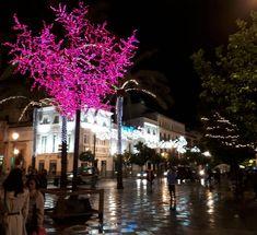 Cadiz, Andalucia, Christmas, Xmas, Navidad, Noel, Natal, Kerst