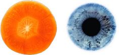 A sliced Carrot looks like the human eye. According to science, eating carrots greatly enhances blood flow to the eyes. Carrot gets their orange color from a plant chemical called beta-carotene, which reduces the risk of developing cataracts.