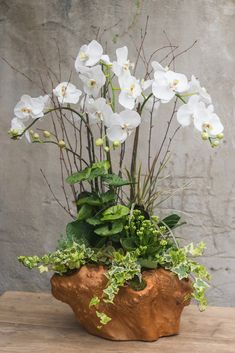 Arrangements With Succulents And Driftwood Best Orchid Arrangements With Succulents And Driftwood - DecomagzBest Orchid Arrangements With Succulents And Driftwood - Decomagz Arrangements Ikebana, Orchid Flower Arrangements, Orchid Planters, Orchid Centerpieces, Orchid Pot, Orchids Garden, Silk Orchids, White Orchids, Exotic Flowers