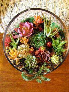 ♥♥♥ Все чаще и чаще творческие люди изготавливают флорариум своими руками в качестве оригинального украшения для дома. Такой мини-сад в бутылке или банке позволяет создать частичку тропического леса или пустыни в городской квартире.