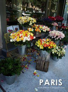 Paris Flower Shop   Flickr - Photo Sharing!
