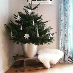 Tiny tree kleine kerstboom