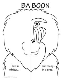 Jungle Animals Symmetry Activity Coloring Pages 1-3