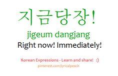 ❋Learn Korean : jigeum dangjang - Right now! Immediately! (pinterest/lyricalpeach)