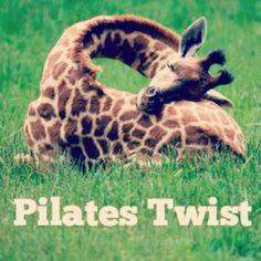 "@inspirahpilates's photo: ""#Pilates Twist   www.inspirahpilates   @CandiaRaquel  """