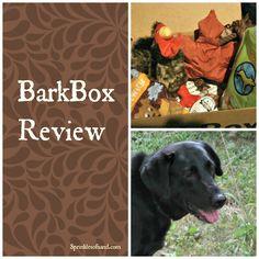 BarkBox Review #6