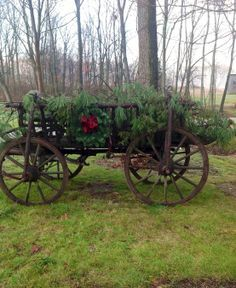 Old vintage wooden wagon filled with evergreens for a lovely Christmas yard display.