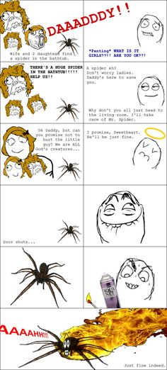 that's me with any spider! dose them hard!!! I hate creepy crawlies