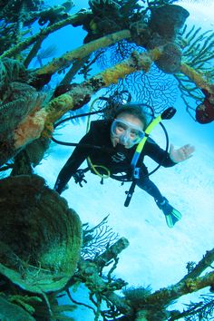 Scuba Diving in the Bahamas!! http://www.deepbluediving.org/scuba-diving-gear-list-the-complete-guide/