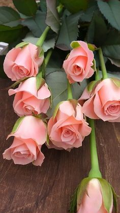 I absolutely adore these perfect pink roses!