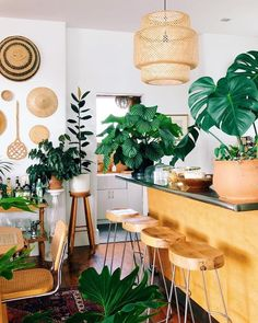 boho plants House - Regardless of Your Design Style, There's a Kitchen Island Style for You Farmhouse Design, Rustic Design, Farmhouse Sinks, Asmr, Kitchen Decor, Kitchen Design, Kitchen Ideas, Rustic Kitchen Island, Dressing Room Design