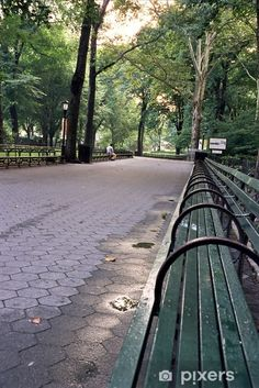 Central Park Benches Wall Mural • Pixers® - We live to change Park Benches, New York City Manhattan, Central Park, Wall Murals, Sidewalk, Change, Live, Wallpaper Murals, Murals