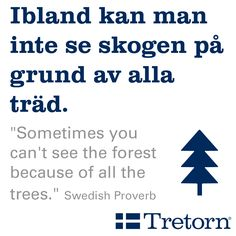 "Swedish proverb - ""Sometimes you can't see the forest because of all the trees."""