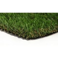 The GREENLINE Jade 50 3 ft. x 8 ft. Artificial Synthetic Lawn Turf Grass Carpet for Outdoor Landscape features soft, non abrasive, non-absorbent fiber. It is a perfect choice for outdoor usage. Artificial Grass Rug, Fake Grass, Outdoor Landscaping, Backyard Landscaping, Landscaping Ideas, Landscaping Software, Outdoor Carpet, Indoor Outdoor, Outdoor Ideas