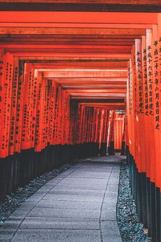 Planning a trip to Kyoto this year? Here are the 10 best things to do in Kyoto Japan! Including visiting the Bamboo Forest, shrines, & the Gion District. Japan Travel Tips, Asia Travel, Lonely Planet, Places Around The World, Around The Worlds, Beautiful Places In Japan, Future Travel, Dream Vacations, Travel Pictures