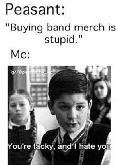 I think I would freak out if someone told me that buying band merch is stupid.