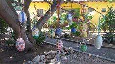 Pasen 2018 Happy Turtle, Curacao Happy Turtle, Plants, Plant, Planets