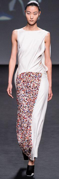 Christian Dior - Haute Couture - Fall 2013