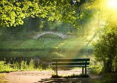 Photo about Bench on the bank of the river in summer day. Image of landscape, bench, peaceful - 9992811 Eckhart Tolle, Walking Meditation, Meditation Buddhism, To Do This Weekend, Ways To Relax, Relaxing Music, Green Life, Permaculture, Mother Nature