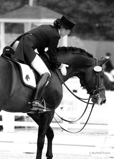 good job by gypsymarestudios, via Flickr - dressage