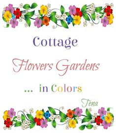 Hello Everyone, Thank you for a beautiful day yesterday. Today we R pinning in pods. Today, I would like to Sprinkle *Cottage Flowers Gardens*. With Cottage Flowers such as Delphiniums, Larkspur, Lambs Ear,  Snapdragons, Blue Bonnets, Flox, Cosmos, Shasta Daisies,herbs, humming birds, bees, butterflys, teacups, etc... In Cottage Form inside or out. I would like to Sprinkle in colors. Please end your pods w/this Cottage Flower Garden pin. I hope you have fun...And, Always Stay Blessed.