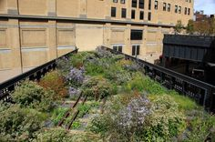This railroad did go into this building in the 40's...great way to end The High Line with plants and flowers