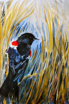 Original watercolor painting of a red winged black bird resting in the reeds. We have seen many of these fellows this winter. There bright red