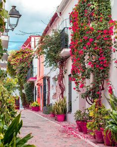 Marbella is an amazing place in Spain. It's full color positive atmosphere and wonderful people. Generally Marbella is a great place to travel. Marbella Old Town, Marbella Malaga, Veranda Magazine, Beautiful Streets, Foto Art, Beautiful Places To Travel, Spain Travel, Beautiful Flowers, Colorful Flowers
