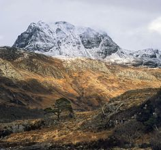 Mighty Slioch, Loch Maree, Kinlochewe, Scotland, Slioch, looms, large, powerful, Scots pine, autumn, winter, snow  photo