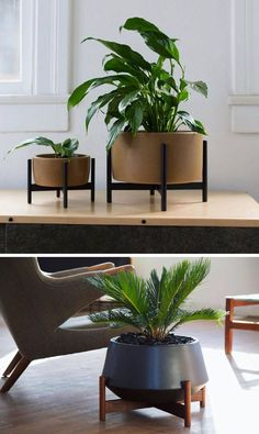 Home Decor Ideas - 6 Ways To Include Ceramic In Your Interior | These ceramic planters with wooden stands combine two natural elements and create a modern place to display your plants.
