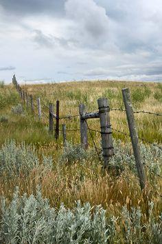 Prairie fields with old fence in rural Saskatchewan by Sandra Cunningham - Saskatchewan, Prairie - Stocksy United Landscape Photos, Landscape Photography, Nature Photography, Country Fences, Scenery Pictures, Old Fences, Fence Landscaping, Months In A Year, Beautiful World