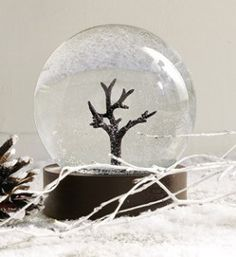 The Perfect Snowglobe