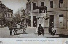 BU-F-01073-5-06160-3 Bucureşti, Statuia Lupoaicei situată la această dată la capătul străzii Lipscani, 1900- (niv.Document)