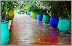 Example of colour in pots - we need a modern take on this theme