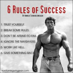 If you want 6 simple steps to guarantee a successful 2016, you can't go past these! irontanksgymgear.com