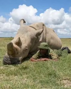 In Africa, southern white rhinos, once thought to be extinct, now thrive in protected sanctuaries & are classified as near threatened. But the western black rhino & northern white rhinos have recently become extinct in th wild. Challenge The Status Quo, Armed Conflict, Beautiful Love Stories, Stop Animal Cruelty, Rhinos, Call To Action, Social Media Channels, Human Trafficking, Persecution