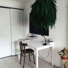 Work space  | berlin | VSCO Grid®