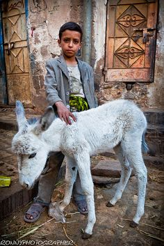 Child with a small white donkey in the streets of Sana'a-Yemen; beautiful picture! :)