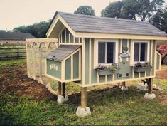 Chicken Coop Testimonials and Comments
