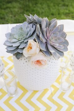 succulents potted in white vases // Photo by Sweet Monday