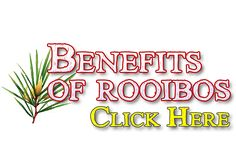 10 Amazing Health Benefits of Rooibos Tea The health benefits of Rooibos tea or red bush tea as it is also known as, are numerous and remarkable. It is grown from a small shrub, which only thrives in the Cedarberg region near Cape Town, South Africa. Tea Benefits, Health Benefits, Health Tips, Health And Wellness, Herbal Remedies, Natural Remedies, Turmeric Curcumin, Get Healthy, Healthy Eats