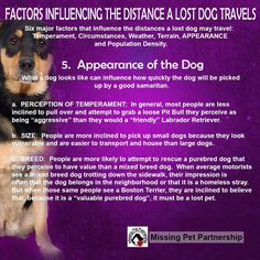 Factors influencing the distance a lost dog travels http://www.lostdogsillinois.org/