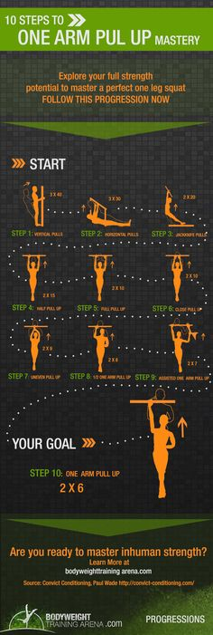 one arm pull up progression - This would be good for Lyra strength training