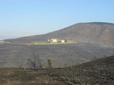 Does defensible space really save your home from wildfire? Here's proof!