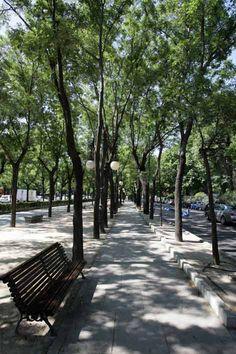 Bulevar del Paseo de La Castellana, Madrid, Spain.
