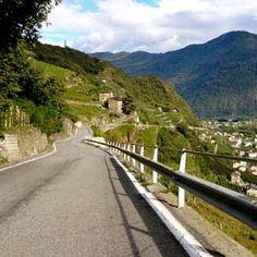 Valtellina - Azienda Agricola Fay