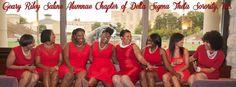 Beautiful Sisters of Delta Sigma Theta Sorority