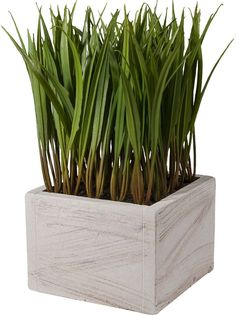 Includes faux grass. Product: Faux botanical arrangement. Real Touch: Yes. Orientation: Desktop. Plant Material: Plastic. Plant Type: Foliage. OUR SKU# LRFY5430 | MPN: LRFY5430 34596756. Construction Material: Pine wood and polyester. | eBay!