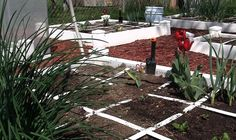 Square foot gardening, as taught by Mel Bartholomew, has become one of the most popular methods of home gardening because it is simple and cost-effective. Here's all you need to know to get started.