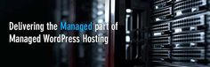 Managed WordPress Hosting in Dubai, at lowest price ever in UAE, with reliable and secure WordPress hosting, Buy Now cPanel Control Panel, Unlimited Bandwidth Design Development, Dubai, Wordpress, Control Panel, Website